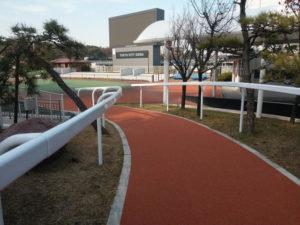 Tecrail Lice Col de Cygne Japon JRA