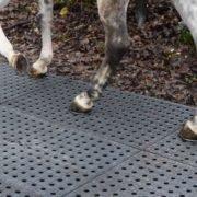 Dalles de stabilisation TR 01 - passage de cheval monté, sortie de centre équestre