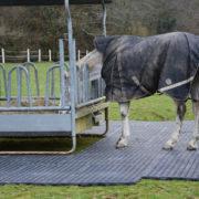 Dalles de stabilisation Tecrail TR 01 - tour râtelier cheval au prés
