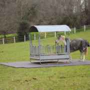 Dalles de stabilisation Tecrail TR 01 - tour râtelier près chevaux